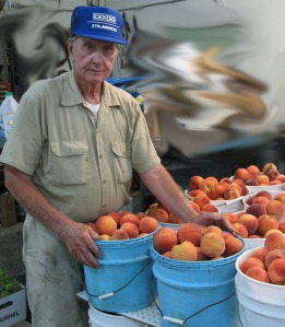 Bob Deutscher packing peaches