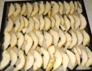 Sliced Pears on Dehydrator Tray