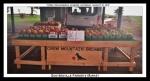 Guntersville Farmers Market