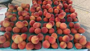 Early Peaches 2